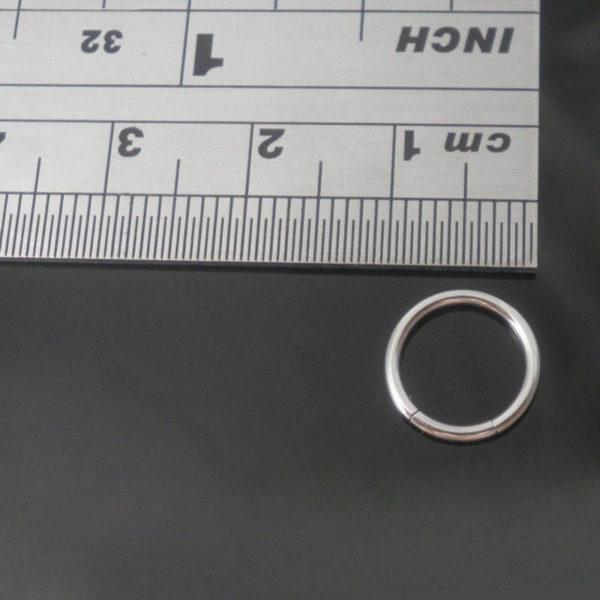 Surgical Steel Seamless Segment Rings Hoop 8mm